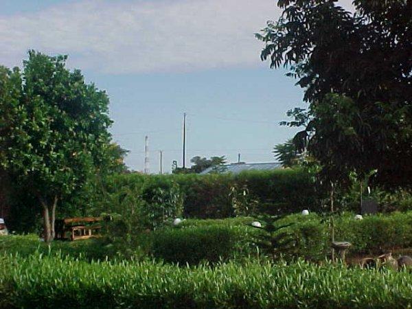 Sunbird Guest House, Livingstone