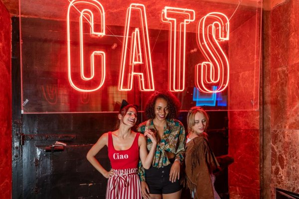 Cats Party Hostel, Madridas