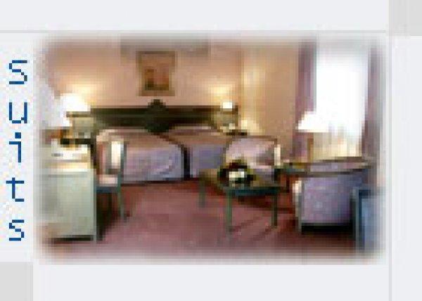 Semiramis Hotels, Palmyra