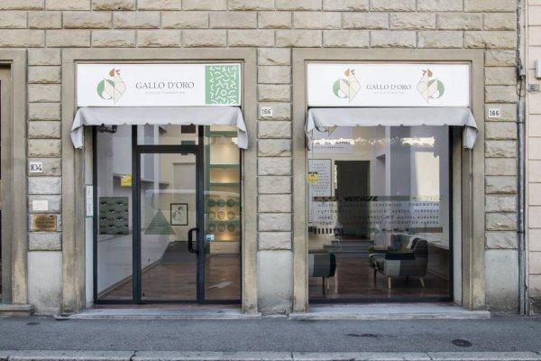 Ostello Gallo D'Oro, Firenca