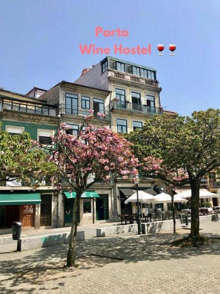 Porto Wine Hostel, Portas