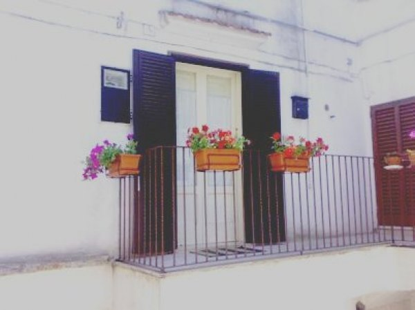 Case Vacanze San Pietro, Noci