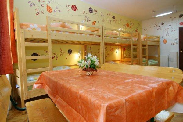 Hostel Mara, Brassó