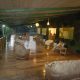 Amazon Geo Jungle Lodge, Manaus