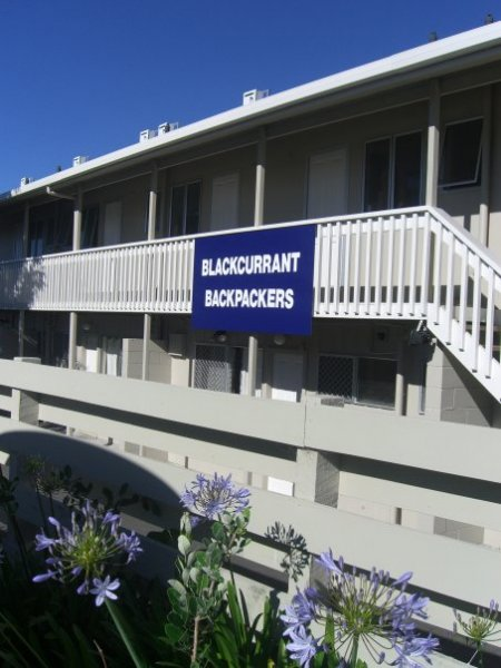 Blackcurrant Backpackers, Taupo