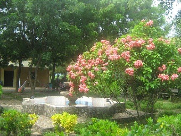 hostal phoenicia, León