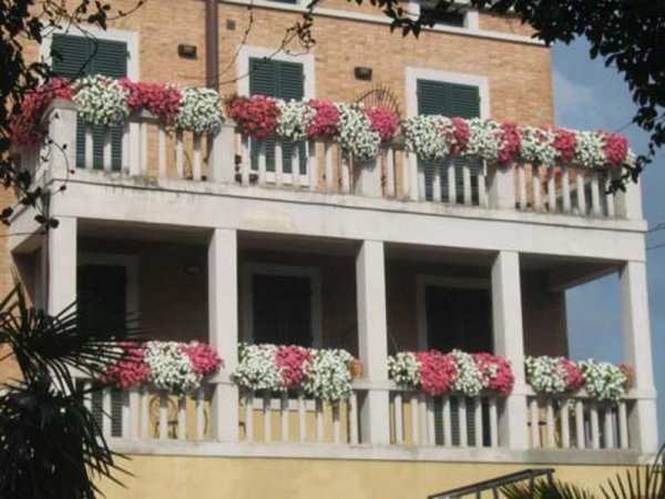 Lo Stellino Young, Gasthaus / Pension in Siena · HostelsClub