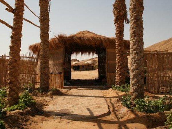 Roots Camp, El Quseir