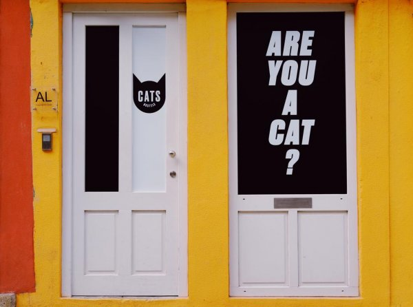 CATS Porto Hostel, Порто