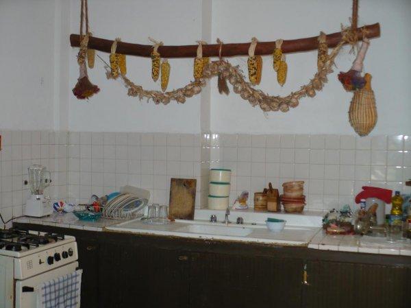 Yagrumo posada and tour agency, Merida