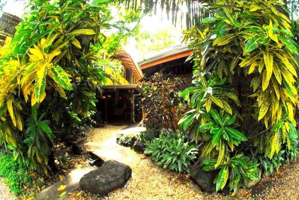 Casa Zen Guesthouse and Yoga Center, Playa Santa Teresa