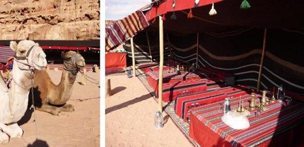 RumTrips Bedouin Campsite, Aqaba