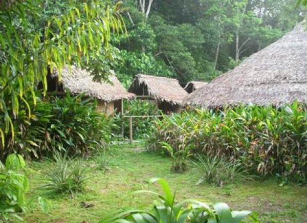 Natural reserve Heliconia Ecolodge, Leticia