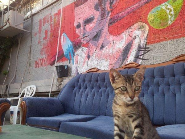 Overstay TLV Hostel, Tel Aviv