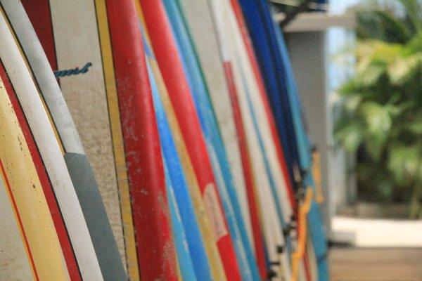 Blue Trailz Hostel and Surfcamp, Tamarindo