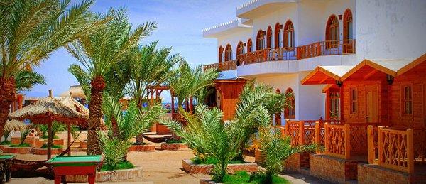 Shams Hotel and Dive Centre, Dahab