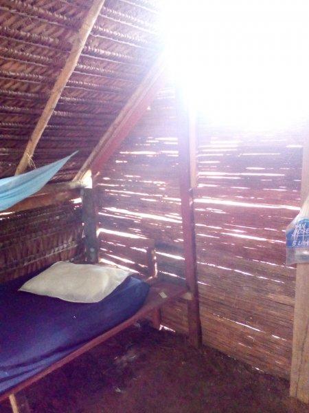 Casa do Xingu, Leticia