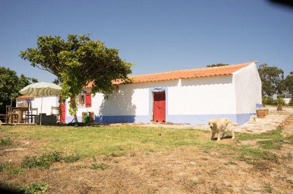 Casa no Campo, Porto Covo
