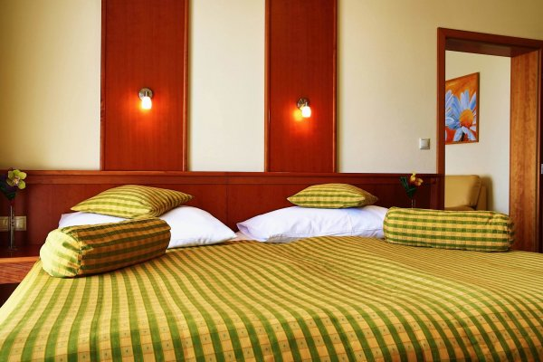 PRIMAVERA Hotel and Congress Centre**** , Plzen