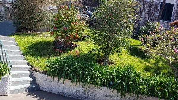 MADEIRA HAPPY HOSTEL, Funchal