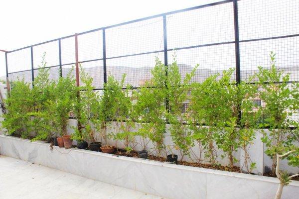 GreenApple Homestay, Джайпур