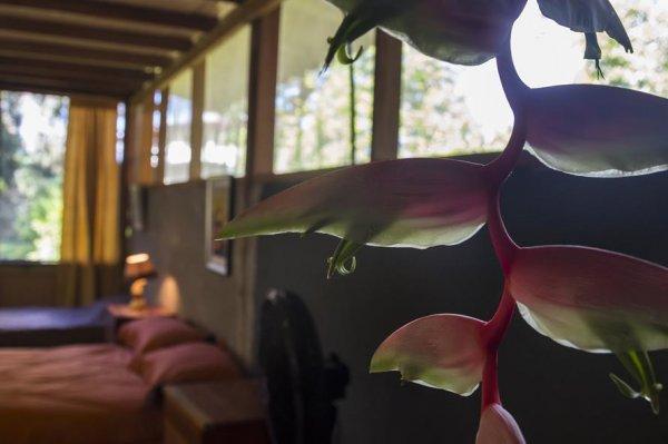 Hidden Paradise Lodge , Osa Peninsula
