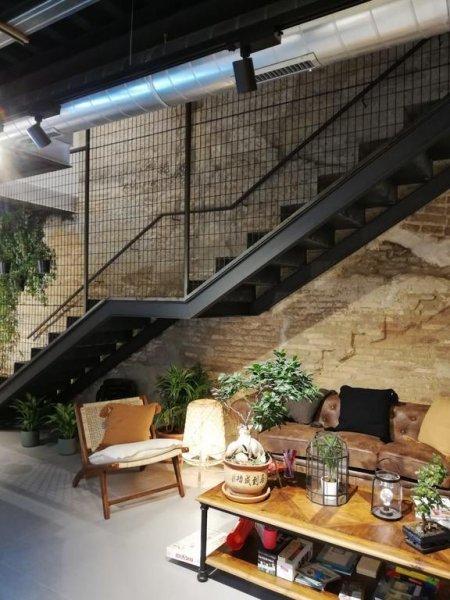 The Botanic Hostel, Zaragoza