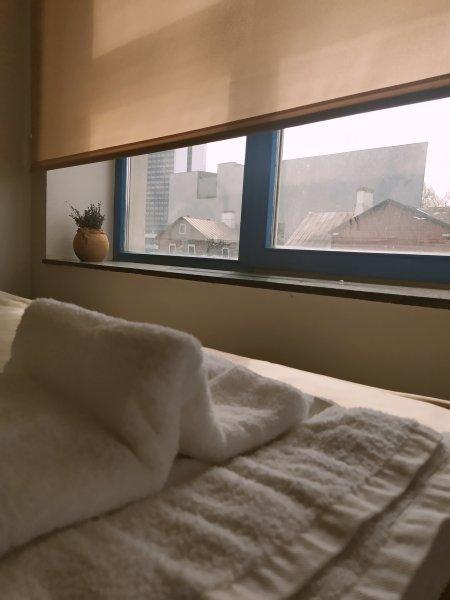 Oldtown Lux Hostel, 塔林