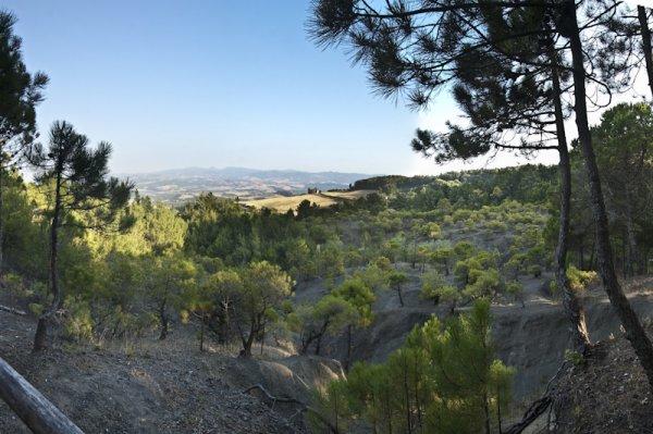 La Miniera, Волтерра