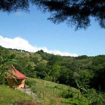 Birdwatcher's Paradise Lodge, Monteverde