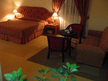 Hotel Golden Oasis, マスカット