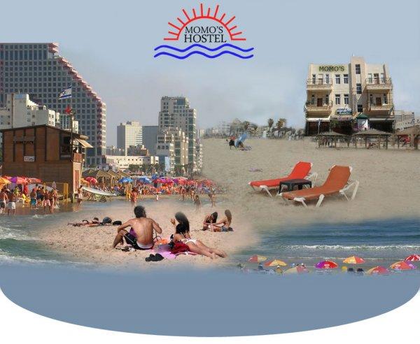 Momo's Hostel, Τελ Αβίβ