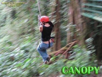 Monteverde Backpackers, मोंटेवर्डे